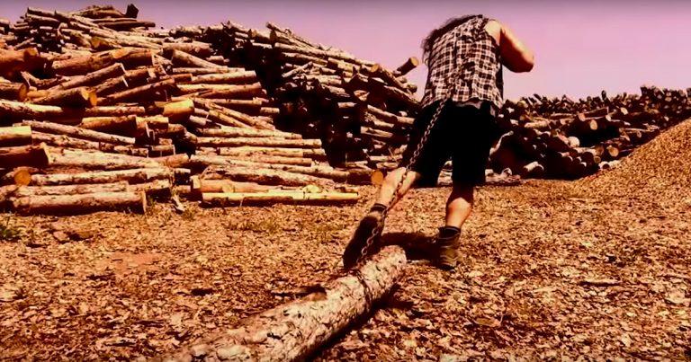 Siroll! y el vídeo de 'Més llenya al foc'