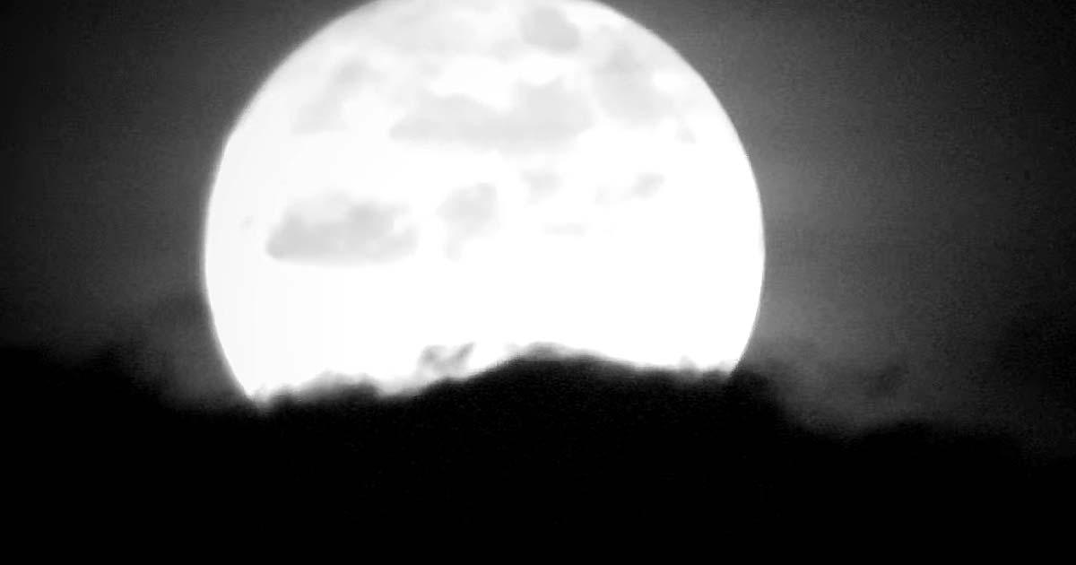 Les Discrets y el vídeo de 'Virée Nocturne'