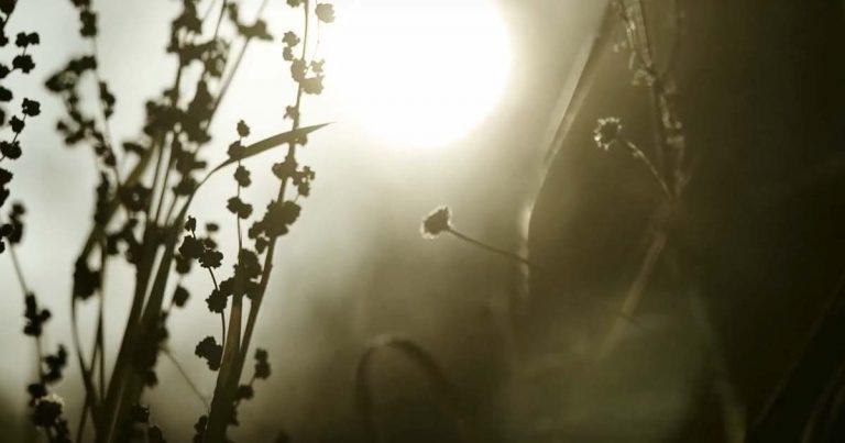 Kuolemanlaakso y el vídeo de 'My Last Words'