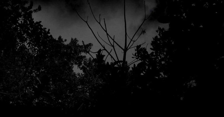 Premiere: Labirinto y el vídeo de 'Mal Sacré'