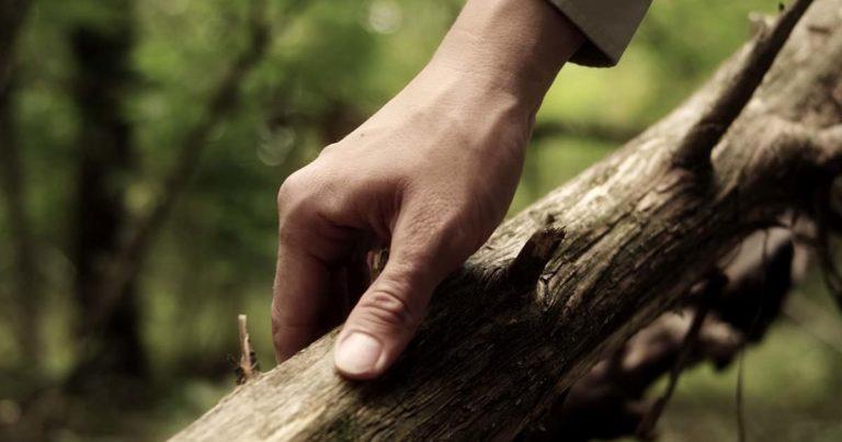 Wear Your Wounds y el vídeo de 'Wear Your Wounds'