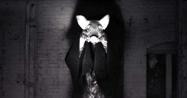 Integrity y el vídeo de '7 Reece Mews'
