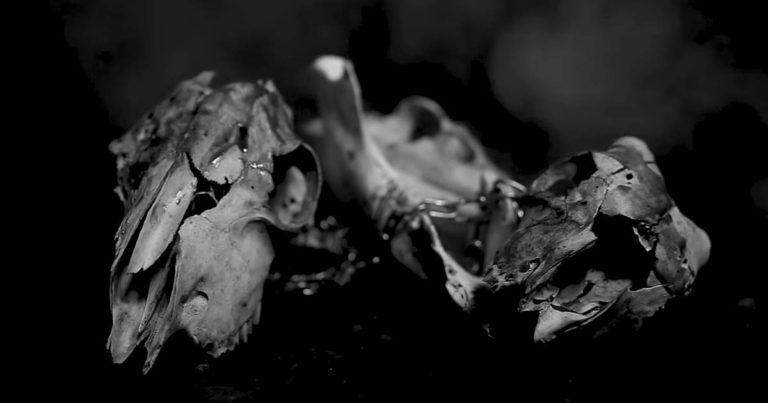 Cloak y el vídeo de 'The Hunger'