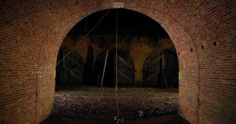 Wiegedood y el vídeo de 'De Doden Hebben Het Goed III'